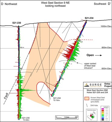 Figure 3. West Seel Cross Section D-D' showing results for holes S21-230 and 234. See Figure 1 for section location.
